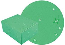 グリーン柄の包装紙と包装した箱の画像